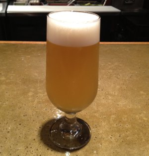 Tired Hands Single Hop Saison (Simcoe)