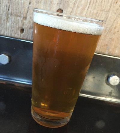 Pivovar Kout 12